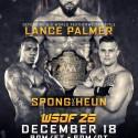 WSOF 26: Tyrone Spong, Lance Palmer Return Dec. 18