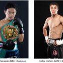 Carlos Carlson Faces WBC Bantamweight Champion Shinsuke Yamanaka in March