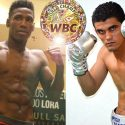 Lubin y Cota disputan eliminatoria WBC