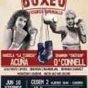 Tigresa Acuña defiente supergallo FIB ante Shotgun O'Connell este viernes en Caseros