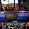 "Bisping Picks Nunes over Shevchenko at UFC 213: ""Amanda Nunes is an absolute beast."