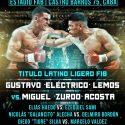 Gustavo Lemos vs. Miguel Acosta por latino ligero FIB este sábado en FAB. TyC Sports 23 h
